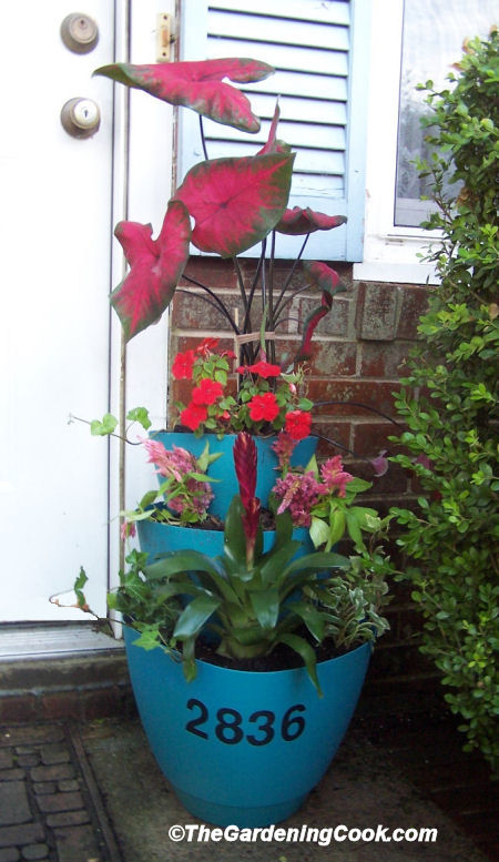 Learn how to make this easy tiered planter and dil it with early summer blooms