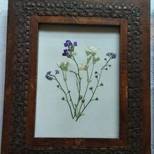 diy tutorial microwave flower pressing, crafts, beautiful framed pressed flower art