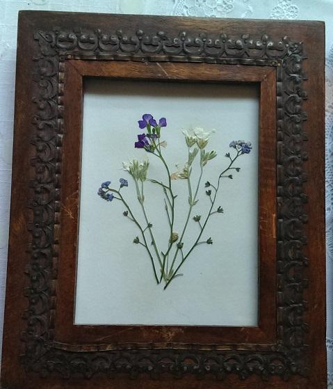 beautiful framed pressed flower art