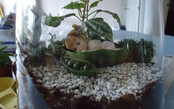 Making a Terrarium- A Snow Day Project