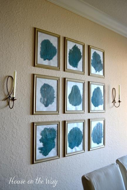 Beach Decor Diy. diy sea fan wall decor  crafts home The frames are basic DIY Sea Fan Wall Decor Hometalk