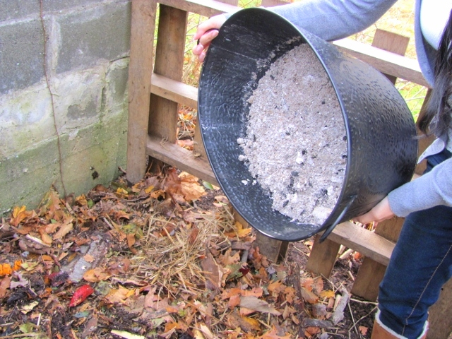 Sprinkling ashes in the compost.