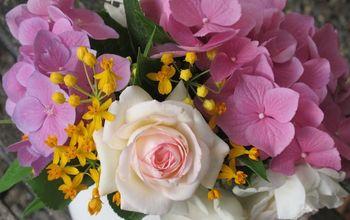 Secrets to a Lush & Lovely Garden