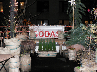 """Wrapping Year One. Winter Season 2009-10. (This image was included in a """"How my Urban Garden Grows (Influence of my Grandfather) @ http://www.thelastleafgardener.com/2010/01/how-my-urban-garden-grows-highly.html)"""