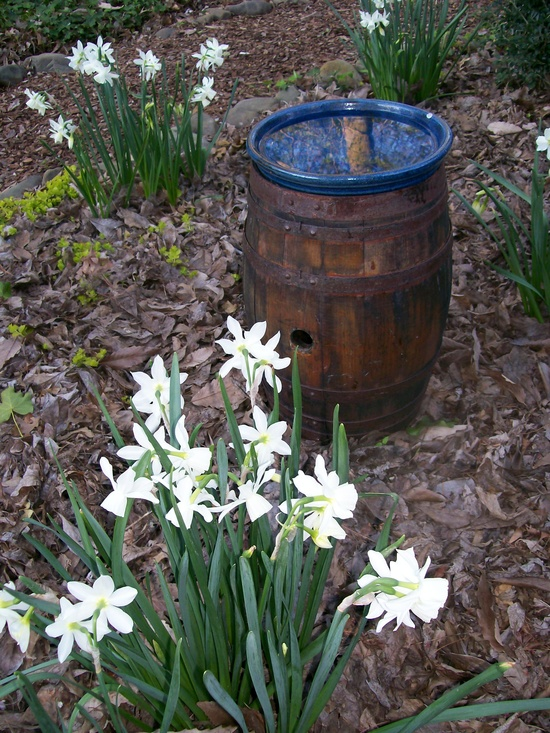 old barrel topped with a pottery dish becomes a birdbath