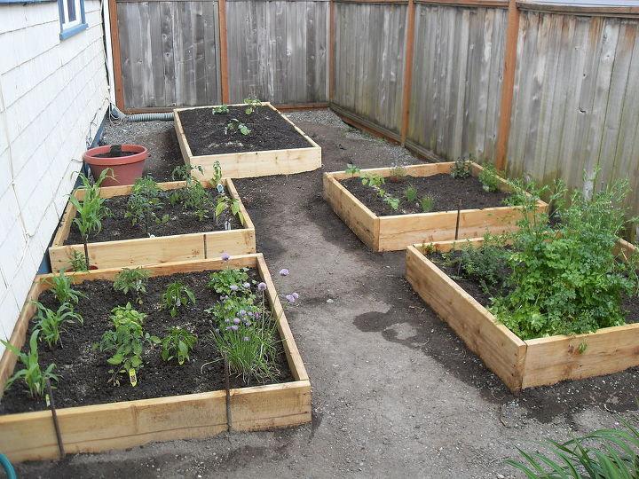 The new garden!!