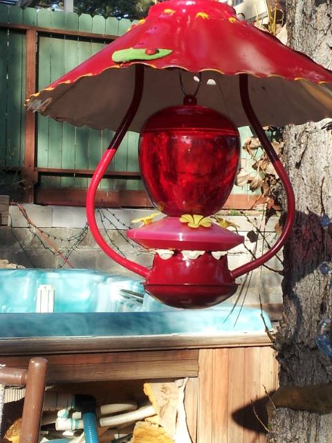 humming bird feeder from cowboy lamp, outdoor living, repurposing upcycling