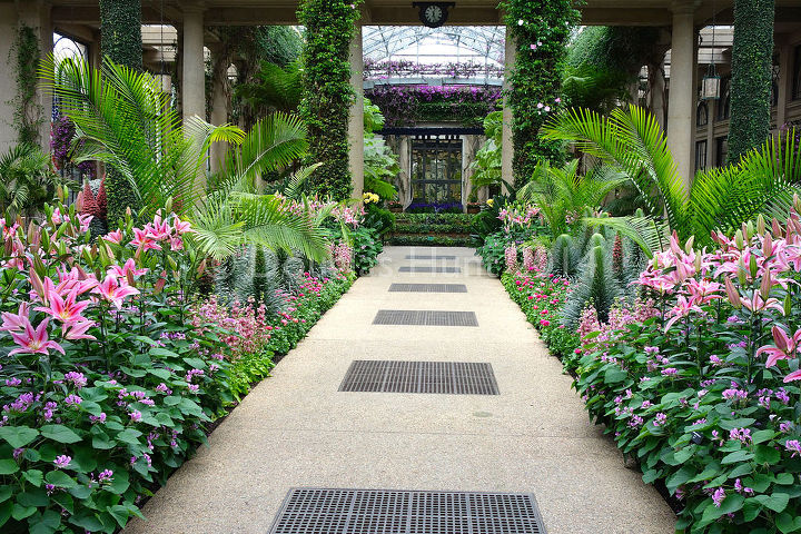 horticultural hocus pocus at longwood gardens, flowers, gardening