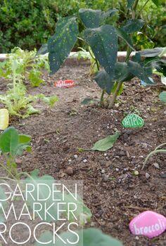 diy rock garden markers, crafts, gardening