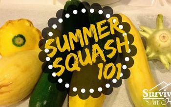 summer squash 101, flowers, gardening
