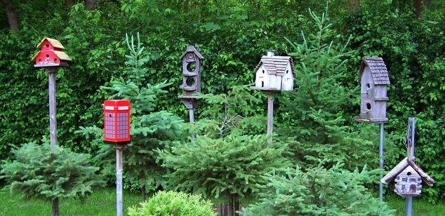 10 Great Ways to Display Birdhouses in Your Garden   Hometalk