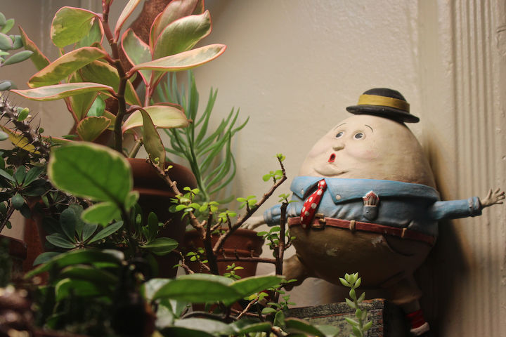 My permanent resident (in my succulent garden) is Humpty Dumpty who also serves as the cover photo for one of my Pinterest Boards @ http://www.pinterest.com/thellgardener/
