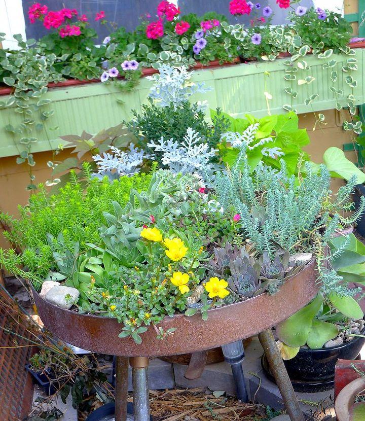 garden in a grill, gardening, outdoor living, repurposing upcycling