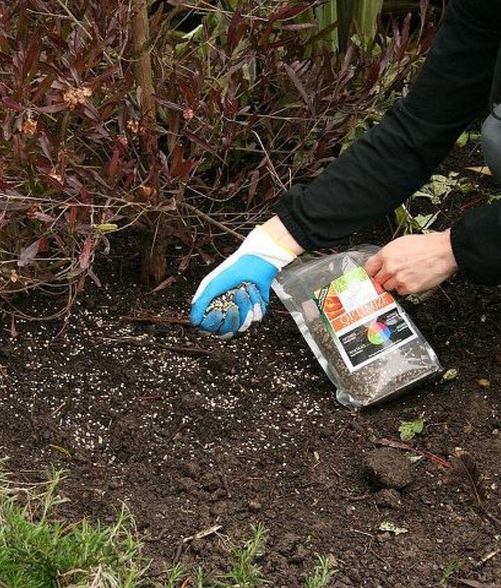 John and Bob's soil conditioner is a great way of keeping soil microbes happy.