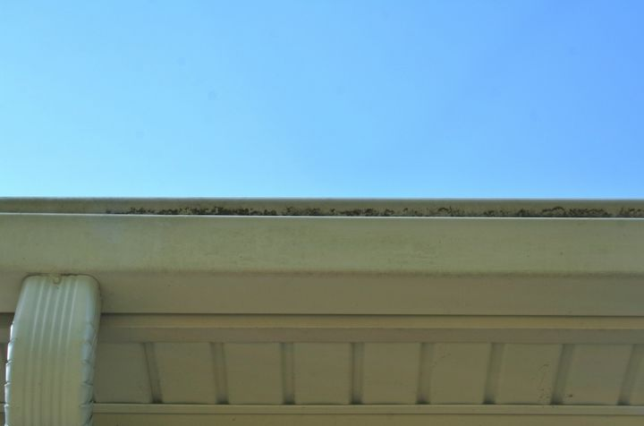 Yuck! Check out those moldy gutters.