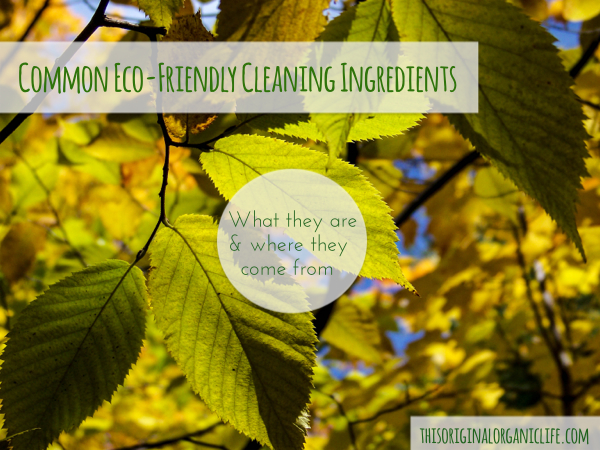 common eco friendly ingredients what they are where they come from, cleaning tips, go green