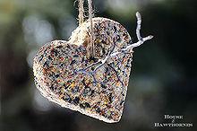 diy birdseed cakes, crafts, outdoor living, pets animals, My birdseed cake