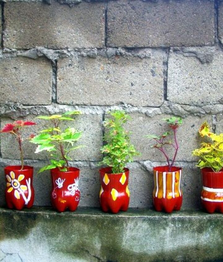 Upcycled PET bottles as Pretty Coleous planters