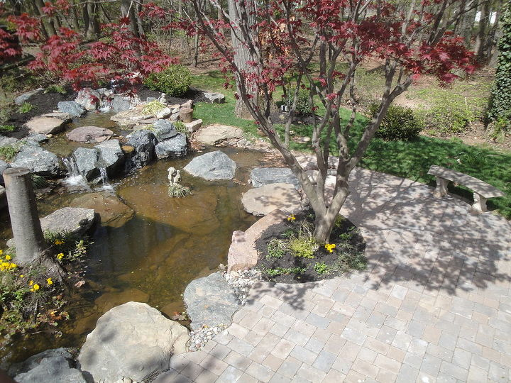 """Change your view of leisure time--  water gardening is a """"lifestyle investment,"""" all you have to do is decide to take the plunge!"""