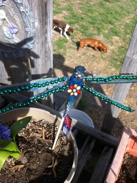 Dragonfly made out of sticks and beads that I found..I have a lot of great ideas thanks to all of you. It is not perfect but neither is nature..