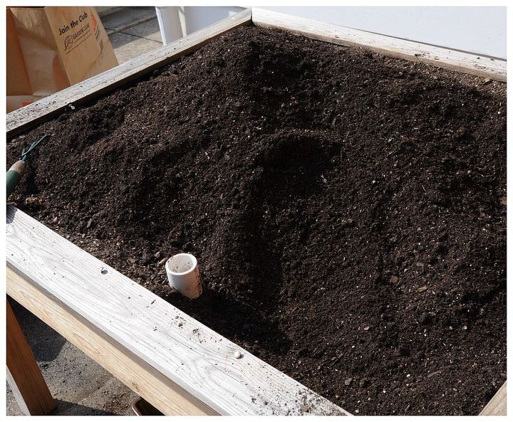 1. Dig out everything that your furry friends might have buried.