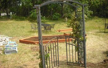 new garden and pond, flowers, gardening, hibiscus, outdoor living, ponds water features, looking nice thru arbor looking from back door