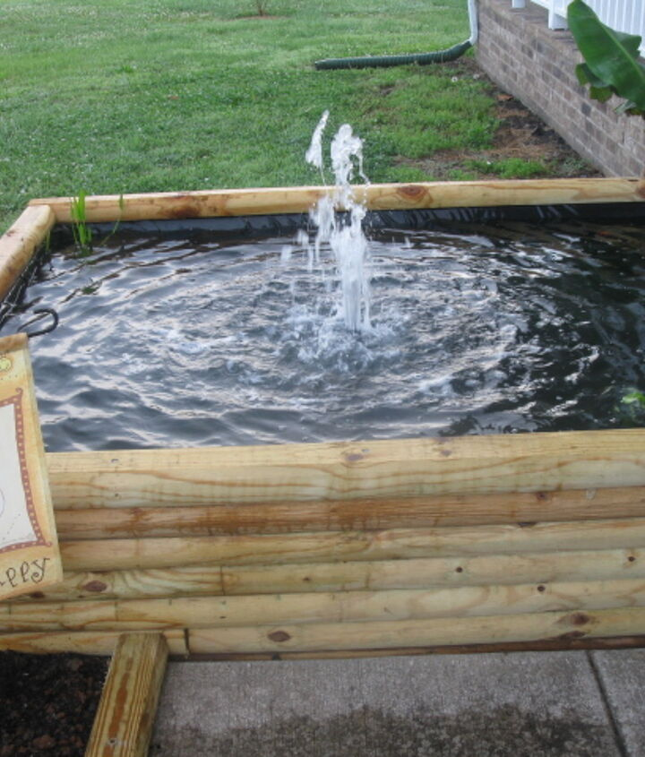 We now have flower beds bordering the koi pond.  We've added water hycinth, cattails, and pickerel rush to the pond.