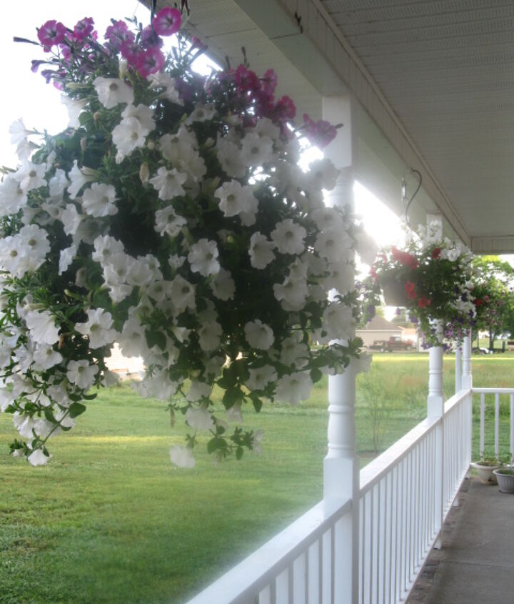flowers on the front porch