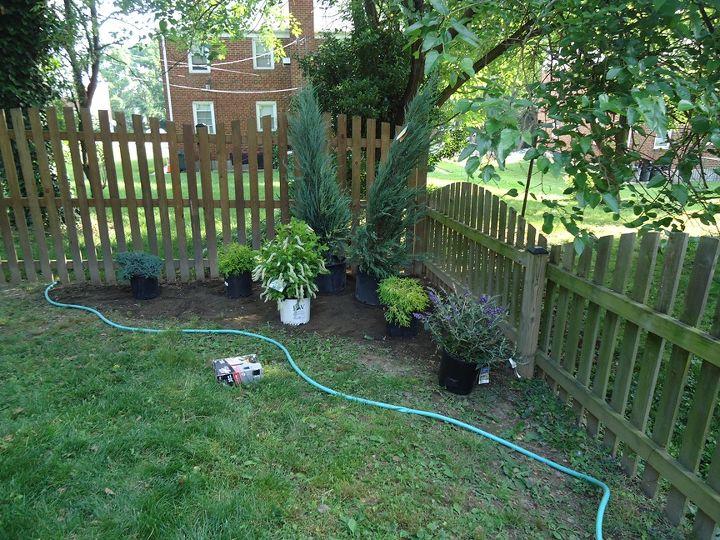 Planting a rear Garden.