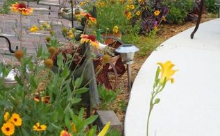 i garden with plants for wildlife and butterflies and native species that will thrive, flowers, gardening, outdoor living, ponds water features, blanket flowers coreiopsis moses in the cradle