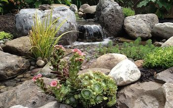 Stunning Landscape Design (Ideas) W/Fish Pond & Paver Patio By Acorn