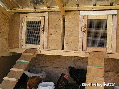 en Coop - Hen Coop - Hen House Building Idea | Hometalk Hen House Design For Many Hens Html on