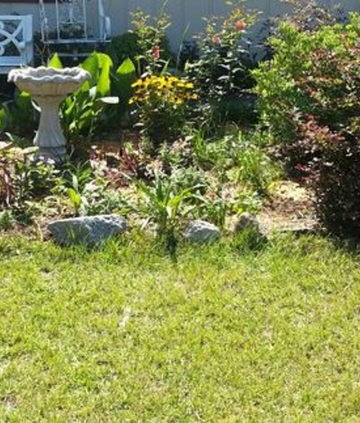 Front yard which needs help