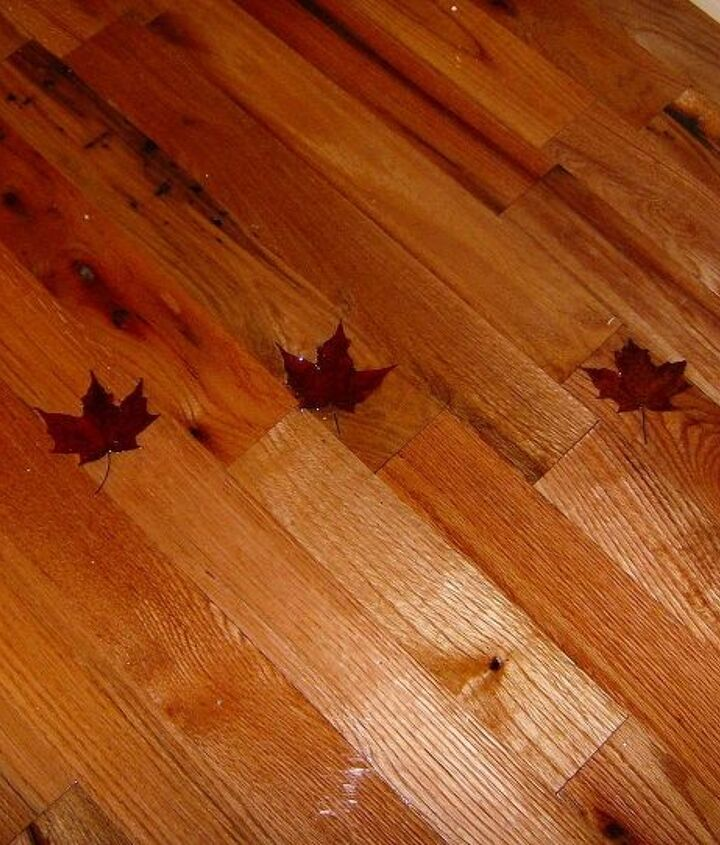 floor done has real maple leafs under two part poxy
