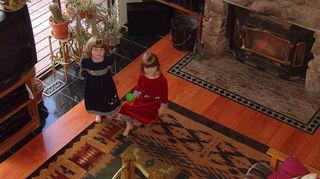 q since carpet tiles use an adhesive will they damage laminate or hardwood floors, flooring, hardwood floors, home maintenance repairs, tile flooring, tiling, rug over hardwood