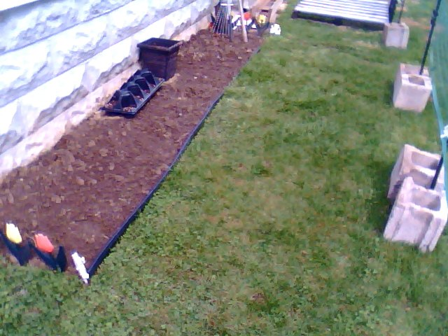 i cut a lil bit more out of the garden. I will plant lettuce and carrots and radishes.
