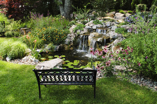 A simple wrought iron bench provides a great viewing vantage of this beautiful pond and waterfall.