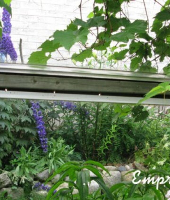 The mirrors on the side garden fence let me see the flowers below from the upper kitchen window.