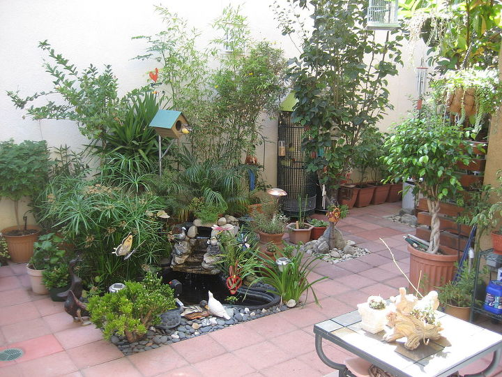 my koi pond and my bird cage that i created in a small yard of my house