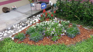 red white and blue patriotic plantings with heart, container gardening, flowers, gardening, perennials, just waiting to fill in now