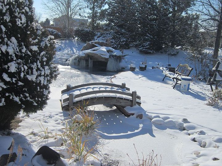ponds in extreme weather, ponds water features