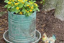 chicken feeder turned planter, gardening, repurposing upcycling, My chicken feeder turned planter