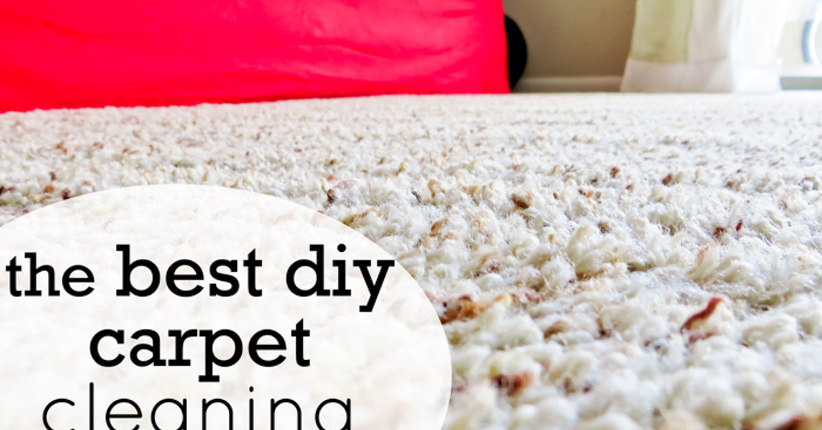 The Best Diy Carpet Cleaners Hometalk