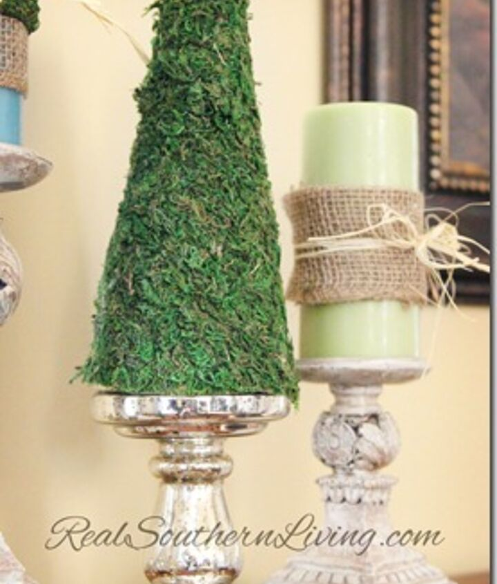 http://realsouthernliving.com/2013/02/22/moss-cone-shape-topiaries/