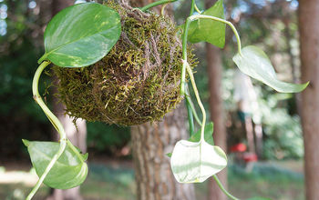 kokedama from plant cuttings, container gardening, gardening