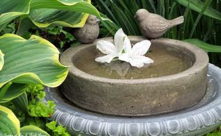 it s all about the birds birdhouses baths and feeders in our garden, gardening, outdoor living, pets animals, repurposing upcycling, More birdbaths in the post This one is tucked in by some large hosta