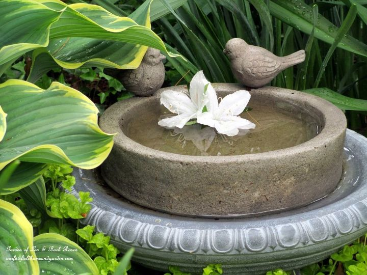 More birdbaths in the post! This one is tucked in by some large hosta.