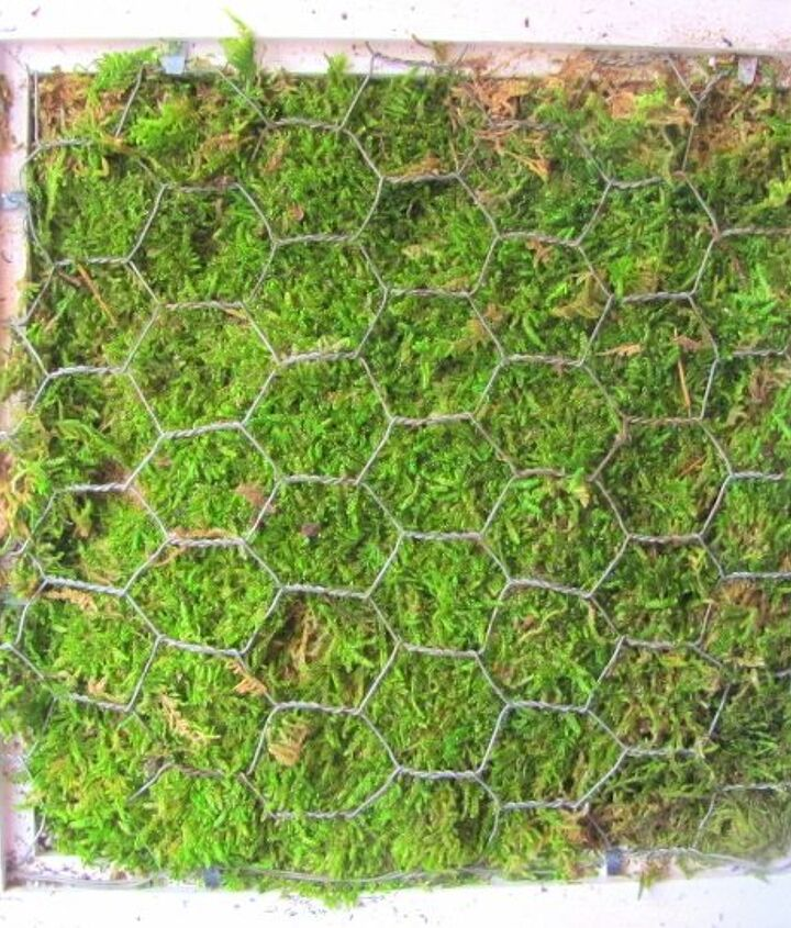 Moss is laid on top of the soil and then chicken wire holds the whole thing together. I used a staple gun to hold the chicken wire down.