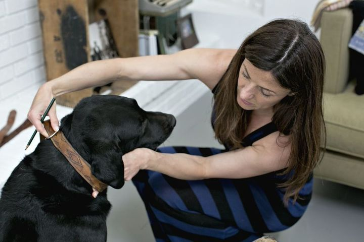 old belts into new dog collars, pets animals, repurposing upcycling