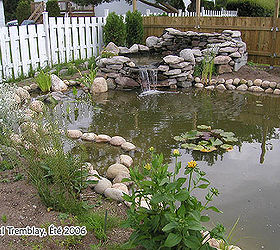 How To Build A Water Garden Or Backyard Pond, Gardening, Landscape, Outdoor  Living